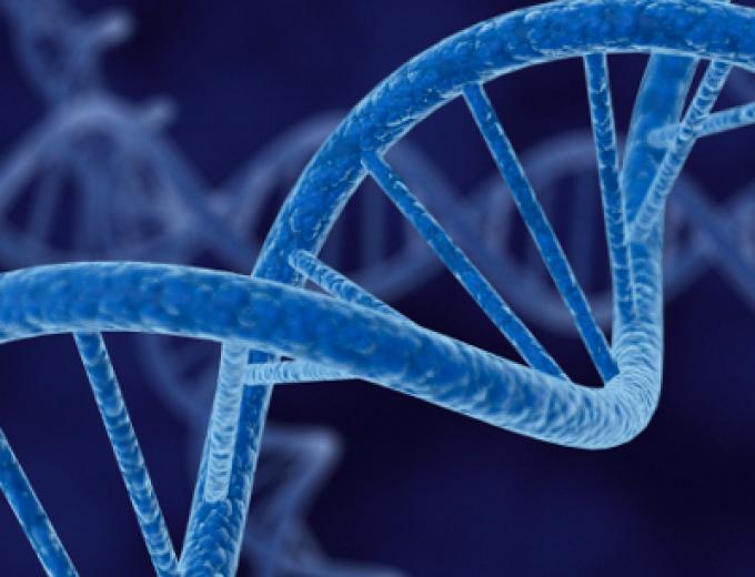 CONVERSACIONES: Los tests genéticos y el cáncer de mama